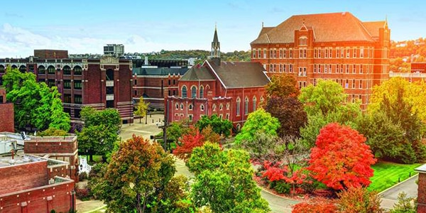 Duquesne University online msn course