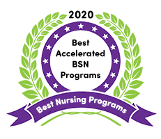 bsn nursing programs in michigan