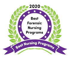Best Forensic Nursing Programs In 2020 Online On Campus
